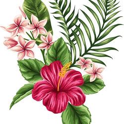 Diana P. avatar photo
